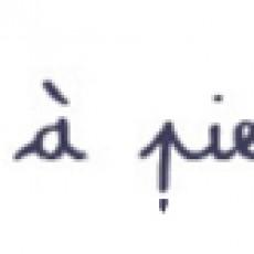 1kmapieds-logo