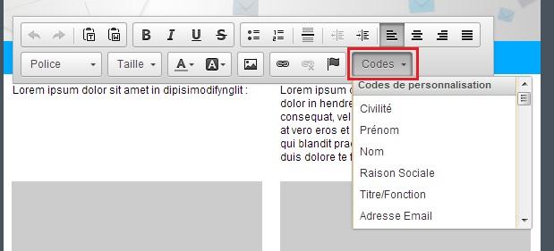 editeur-rapide-etape3-barre-d-edition-de-l-editeur-rapide-codes