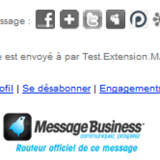 Copie d'écran d'un pied de mail envoyé par Message Business (logo modifiable)