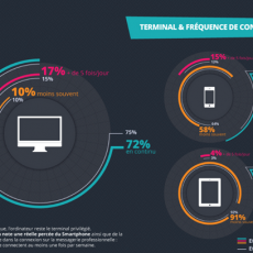 Source : infographie SNCD Email Marketing Attitude B2B 2013
